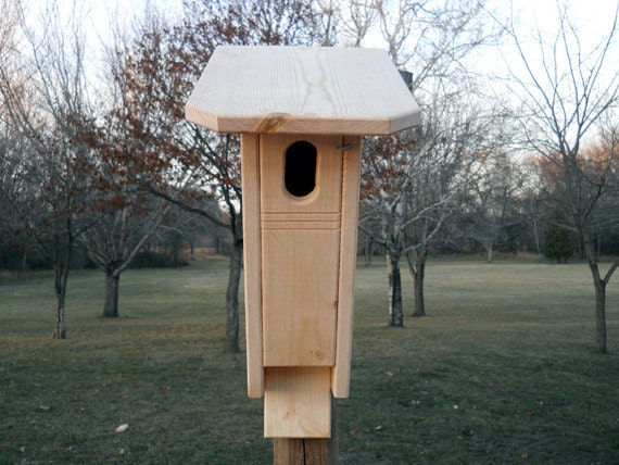 Bluebird house peterson style bluebird by birdhousesfromtheval for Bird house styles