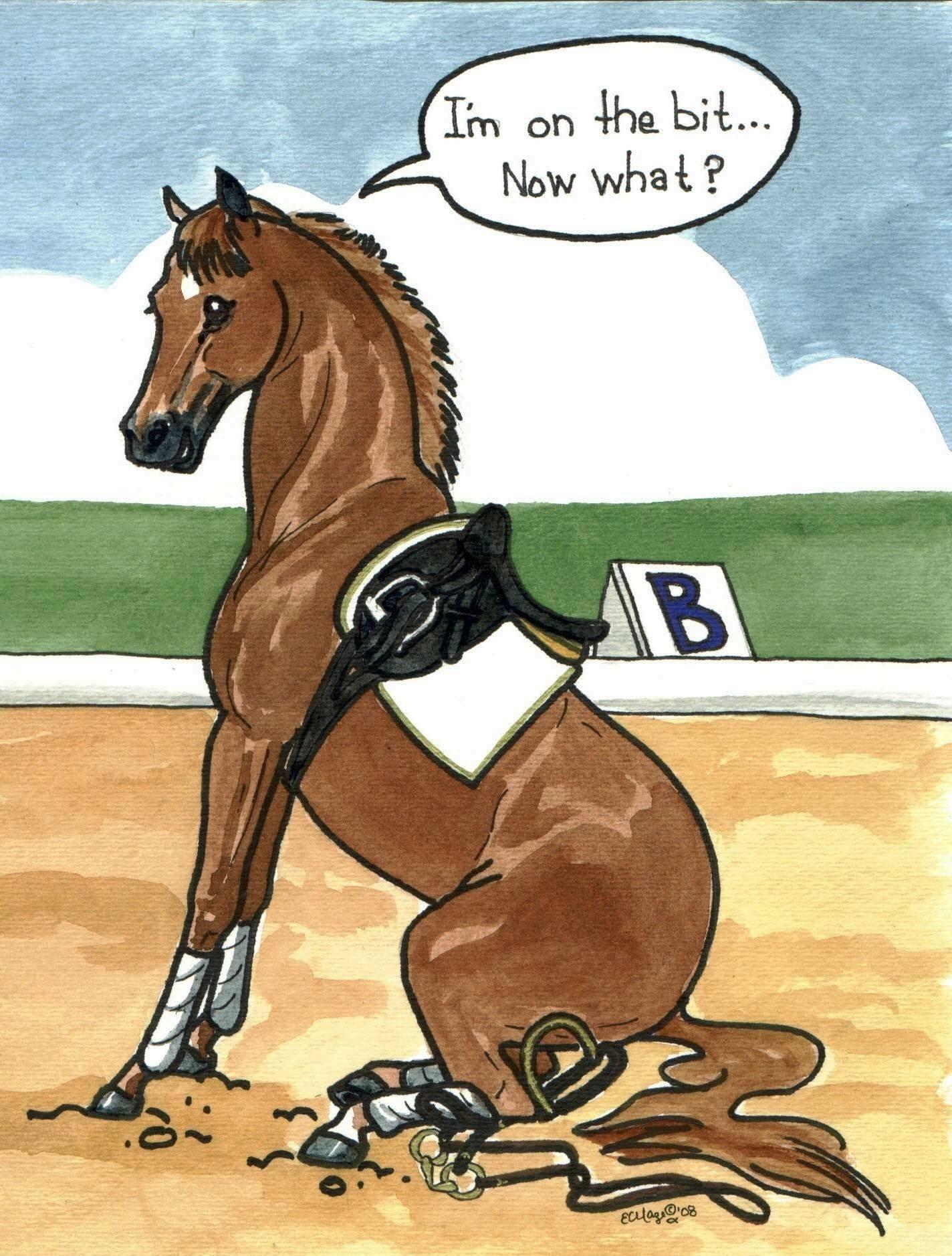 Funny horse quotes quotesgram for Where to go horseback riding near me