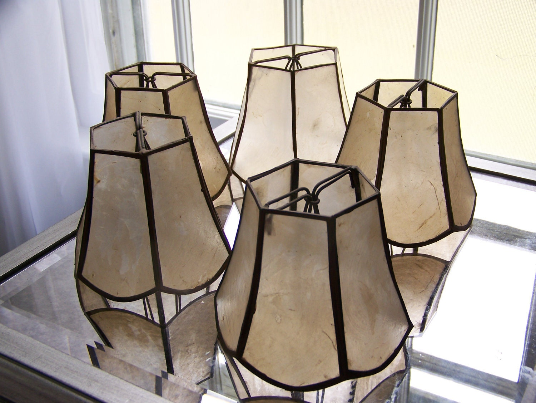 Capiz Shell Chandelier Lamp Shades Set Of By SaltwaterDesignHouse