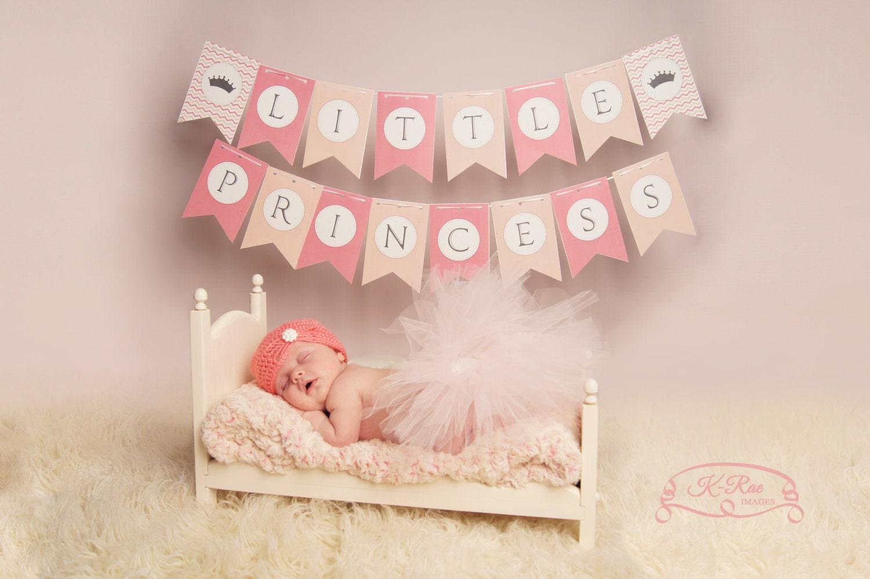 princess diaries 2 script pdf