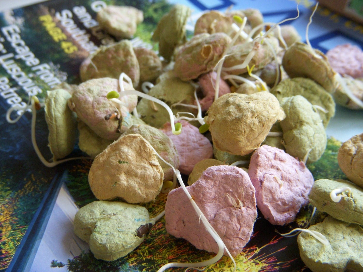 Fifty Heart Seed Bombs