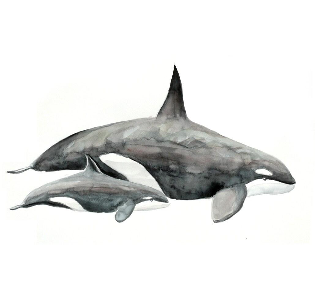 Killer whale Original Watercolor painting fine art artwork wall home decor ocean sea animal illustration 13x19 - fairysomnia