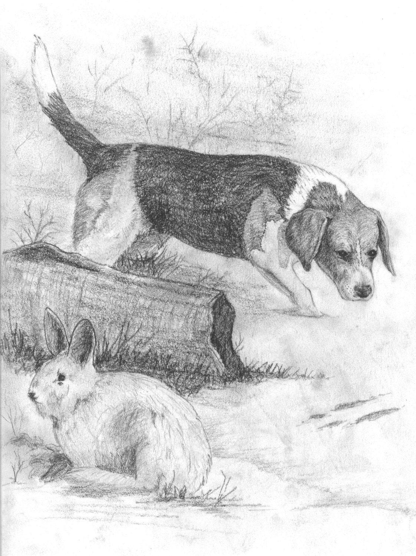 Beagle hunting art