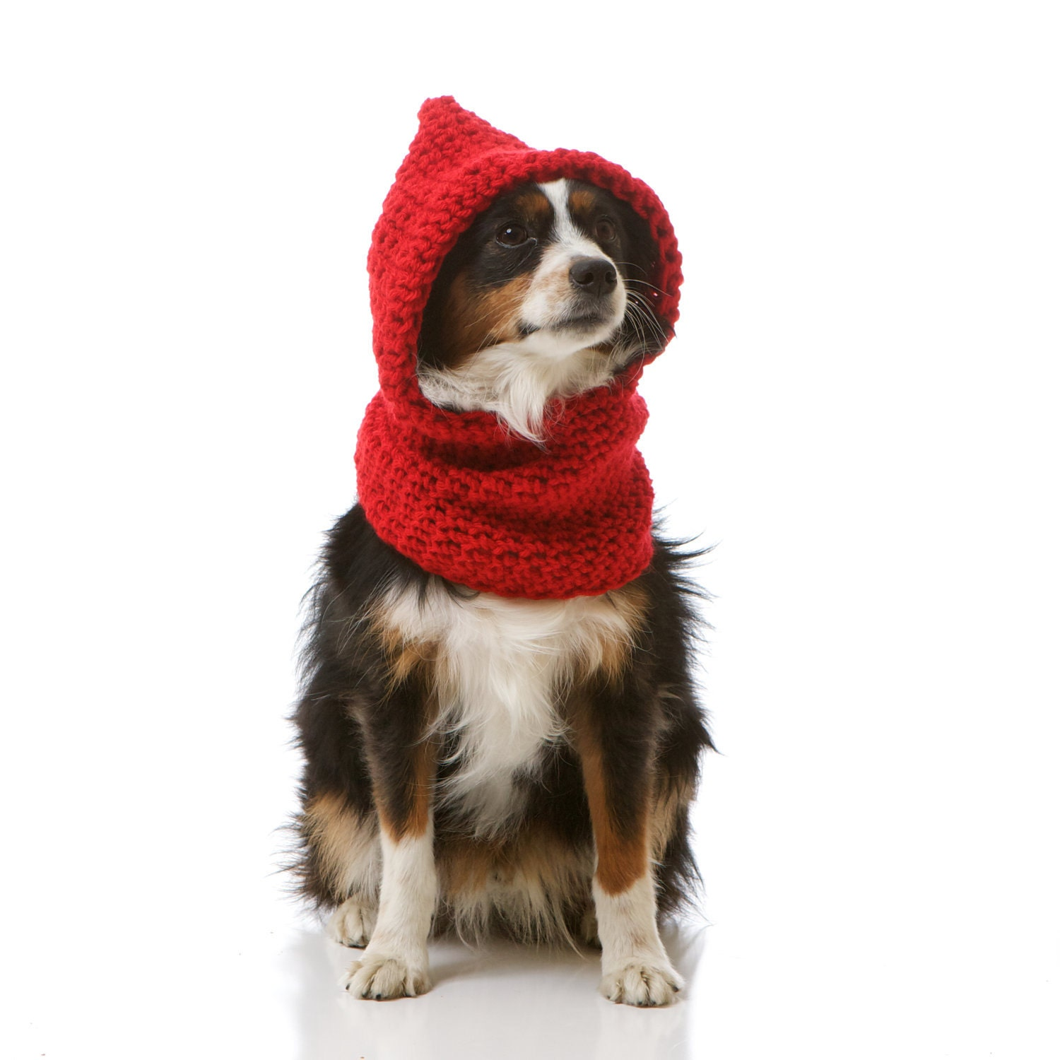 Hoodwinked Slouchy Hooded Cowl for Dogs, Cozy Doggie Sweater Shown in Scarlet Red: Choose From 30 Colors (Small/Med)