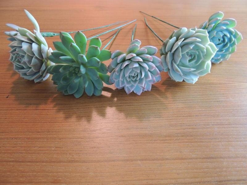 Diy Wedding Flowers Succulents : Wired succulent for diy wedding bouquets