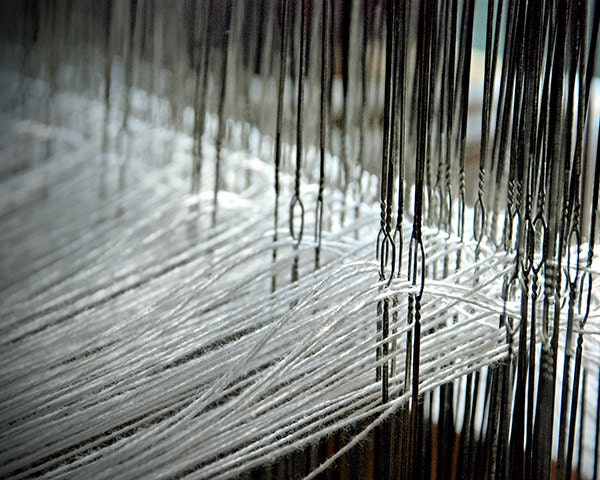 Weaving Loom Heddles and Warp Threads photo 8x10 print - ladylucy