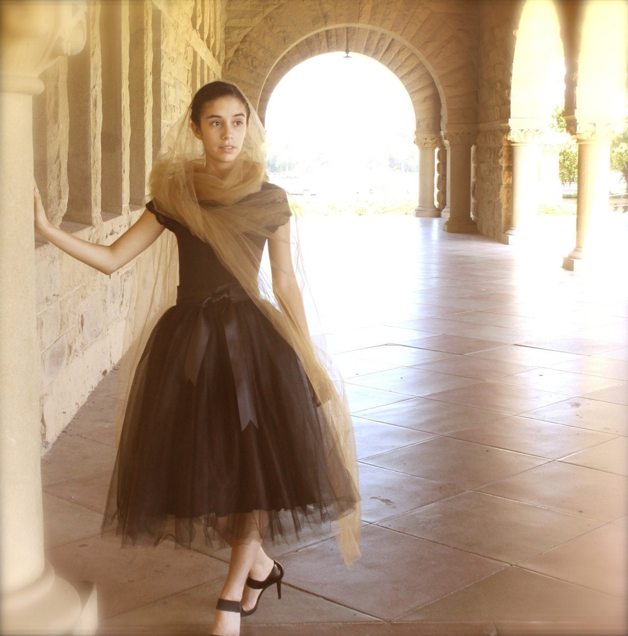 items similar to black tulle skirt tutu for lined