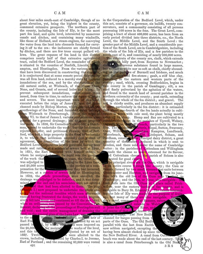 Moped Meerkat Pink Art Print Digital Illustration Drawing Poster Digital Print Wall Art Wall Hanging Digital poster