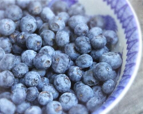 Http Www Etsy Com Listing 77166098 Summer Blueberry Bliss Kitchen Decor
