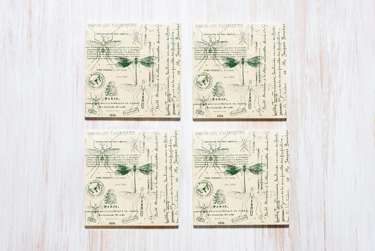 Natural History Coasters, Nature Art, Wooden Coasters, Science Art Gift For Him, Gift for Her - MyHouseOfDreams