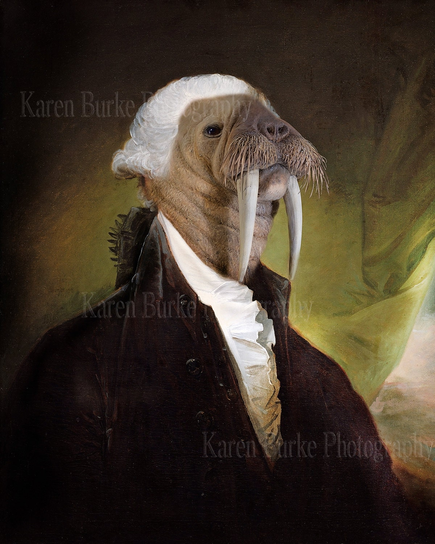 Funny walrus wallpaper