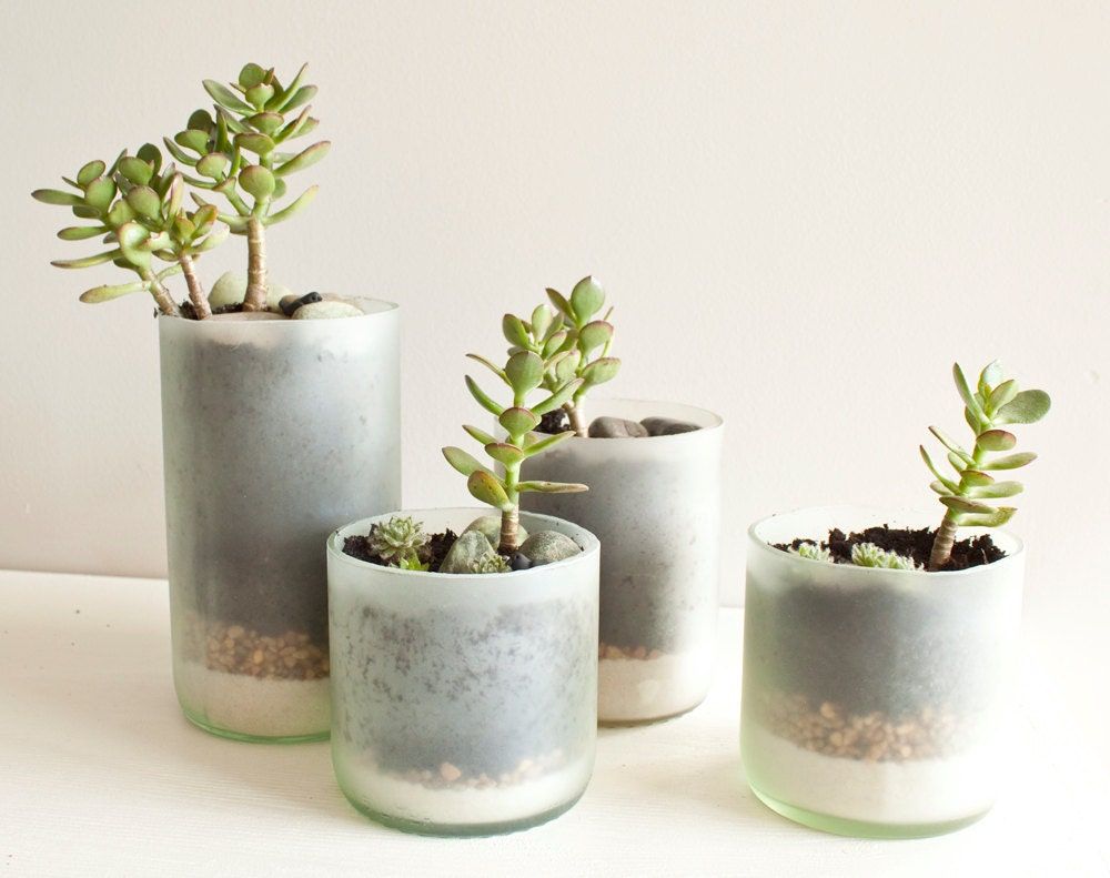 Recycled Wine Bottle Succulent Planters - Size Small