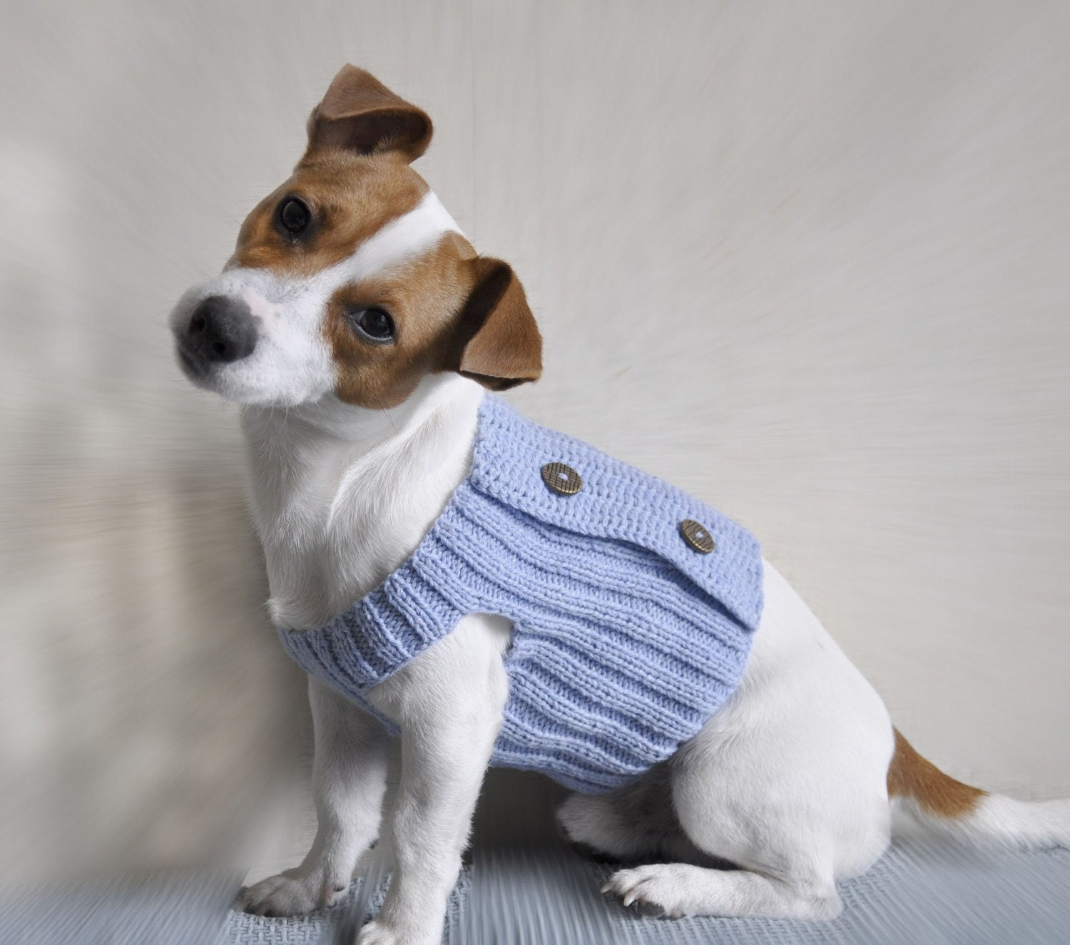 Knitting Pattern For Xs Dog Sweater : Popular items for dog apparel pattern on Etsy