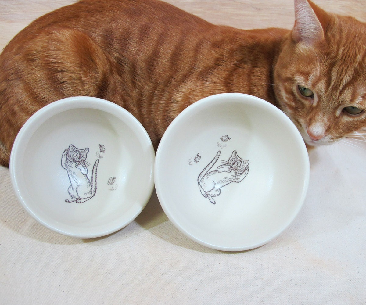 Cat Food Bowl Set - Cat Tested and Approved  Food Dishes - with scare-d-cat decals