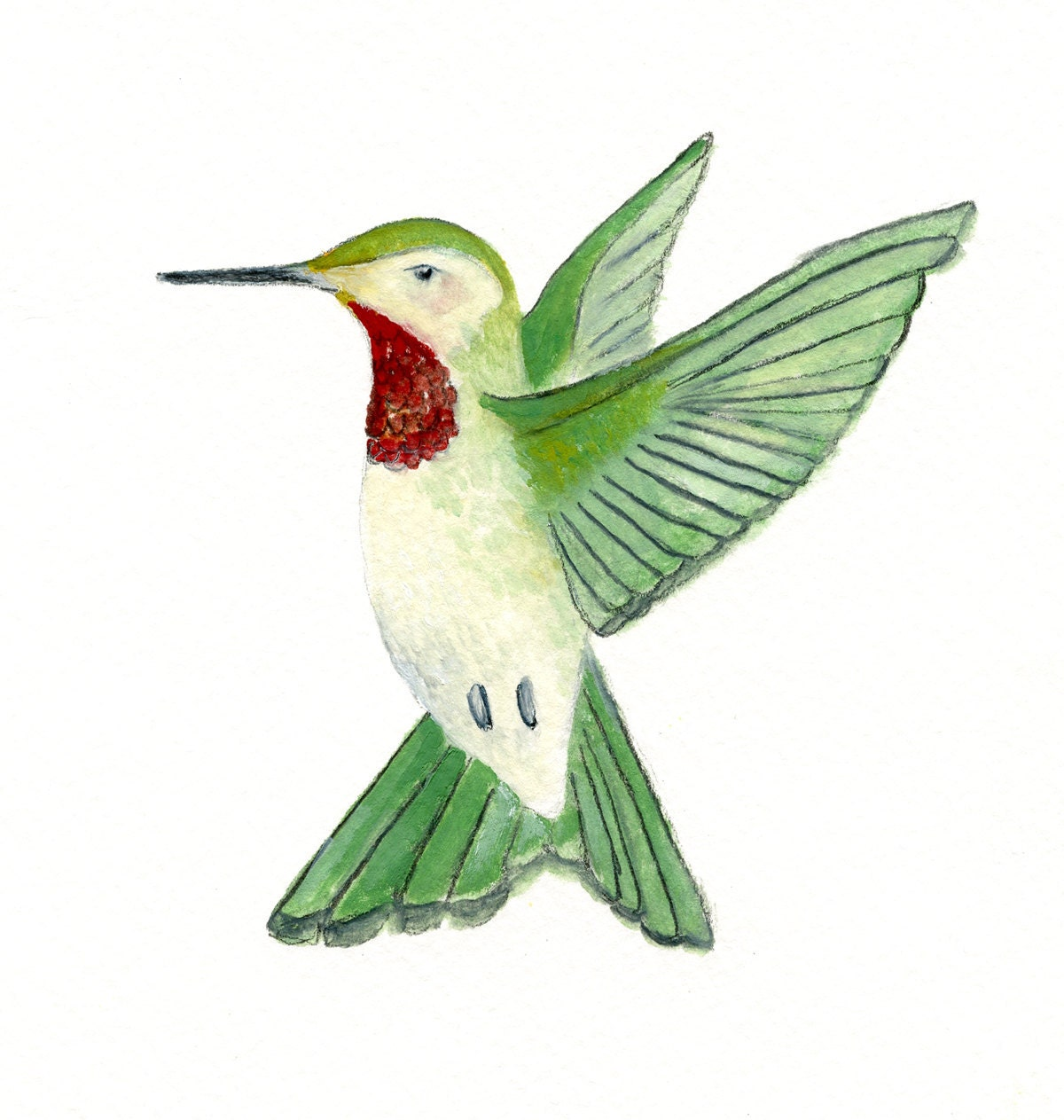 Hummingbird archival print of original oil by littlebeanprints for Hummingbird decor