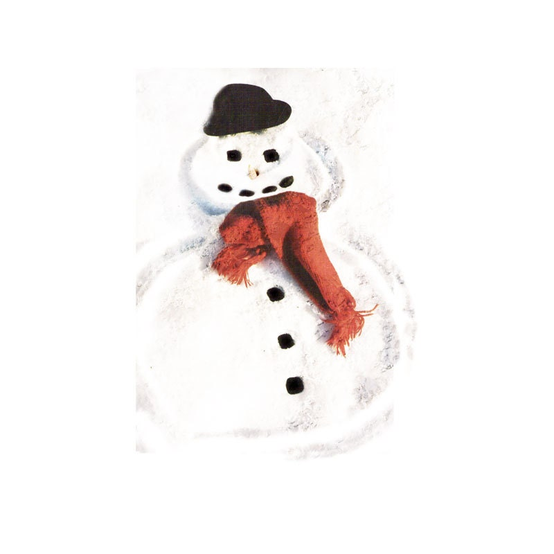 Winter Holiday Photograph Snowman -Decor Decoration Red Fine Art Snow - galleryzooart