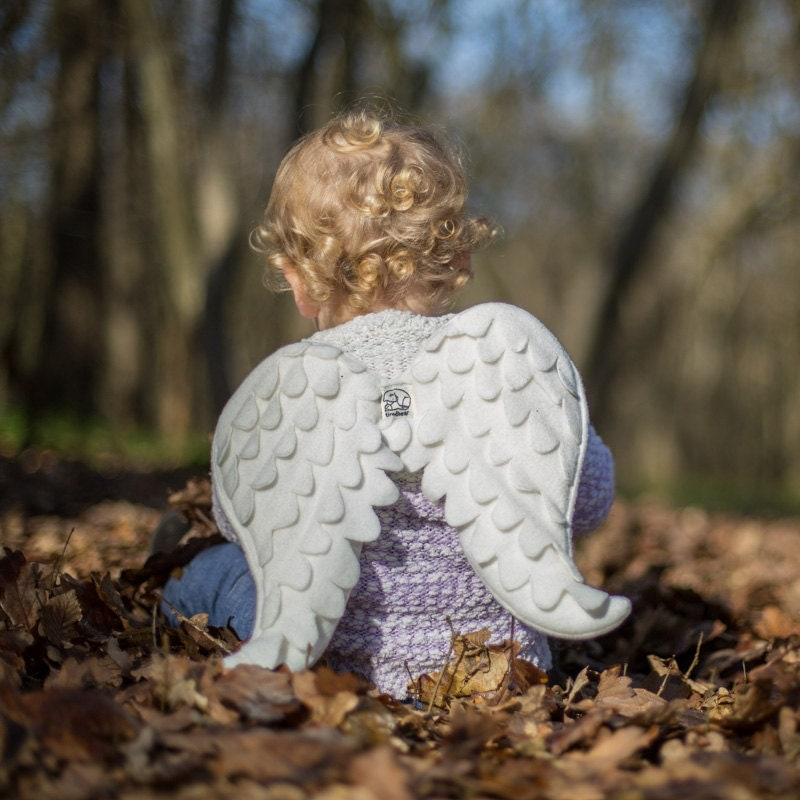 Angel Wings Christmas Childrens Costume