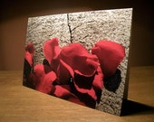 Rose Petals Greeting Card, Blank (GC02)