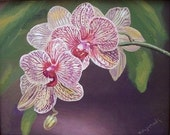 A Linear Orchid Fine Art Note Card