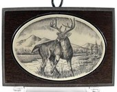 Scrimshaw Plaque with White Tail Deer Buck - lindalayden