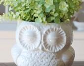 handmade modern - vintage owl planters (large size)