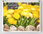 Yellow Ranunculus, Paris - French Fine Art Photograph Art Print - Paris Photography - Paris Decor - Yellow Wall Decor - French Country - TheParisPrintShop