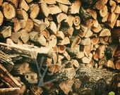 Woodpile 8x10 Fine Art Abstract Photograph Print getting ready for winter