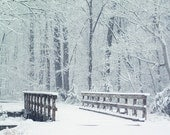Winter Woods with Bridge Photograph. 8x10 Fine Art.  Affordable Wall Art. Snowy, White, Woodland Forest.