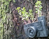 concrete camera fossil planter or other use urban fossil - elswago