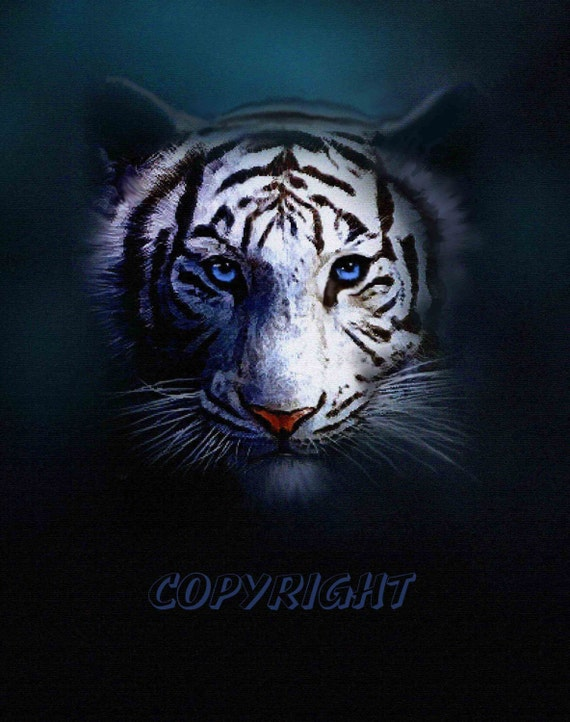 TIGER EYES  8x10 Artist Signed Fine Art open edition collectable