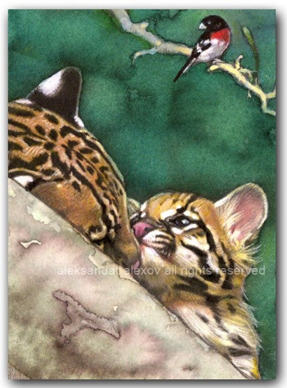 Ocelot Cat Mom Sweet Cub Bird Print