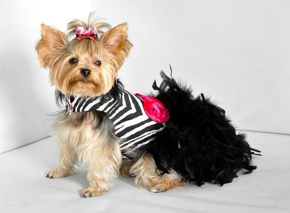 Haute Zebra перо Harness собак платье