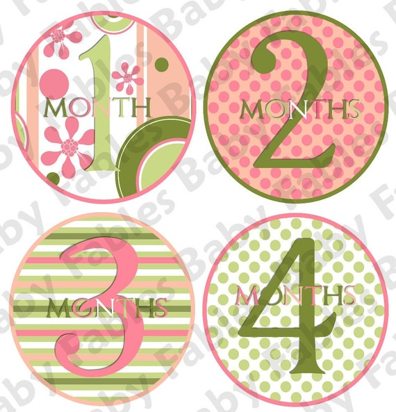 Monthly Baby Onesie Stickers - Watermelon