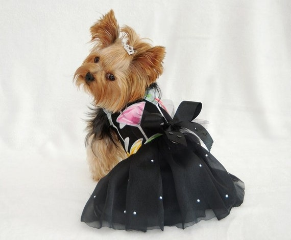 Празднуют платье Harness собак