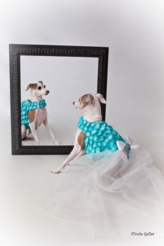 Тиффани Синий Розетка собак Harness платье