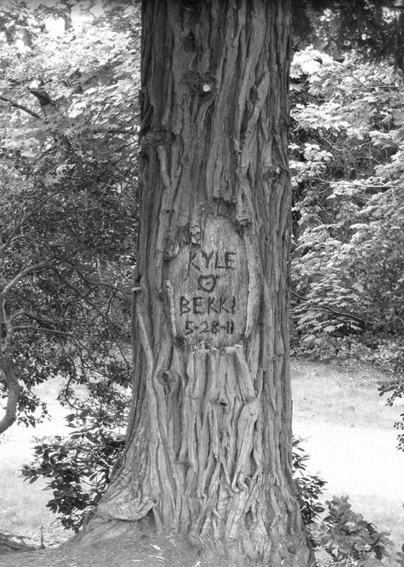 Personalized Tree Carving on Photo - Standing  Tall- (JPEG) image for you to print