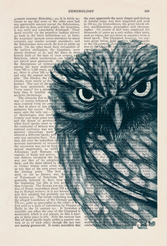 Owl Dictionary page book art print Dark Blue Owl Print on Vintage Book  dictionary page illustration book print art