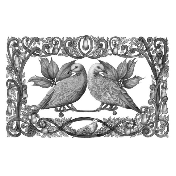 9x12 Giclee Print Two Turtle Doves 12 Days of Christmas