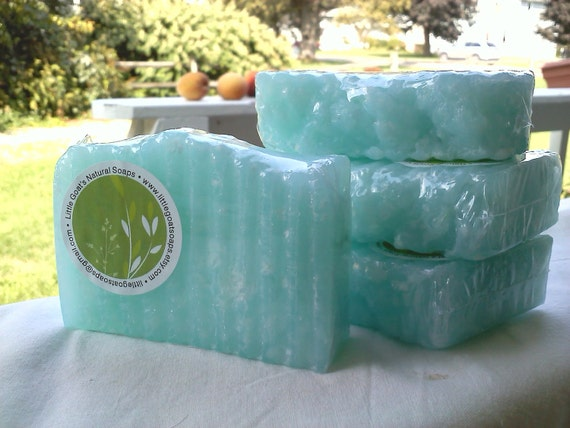 Sea Kelp & Agave - Sea Salt Bar