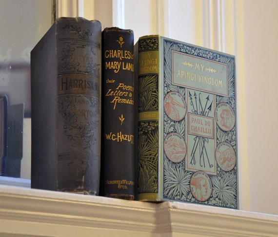 Set of 3 Vintage Rare Books with Beautiful Illustrated Bindings, 1870s - 1880s