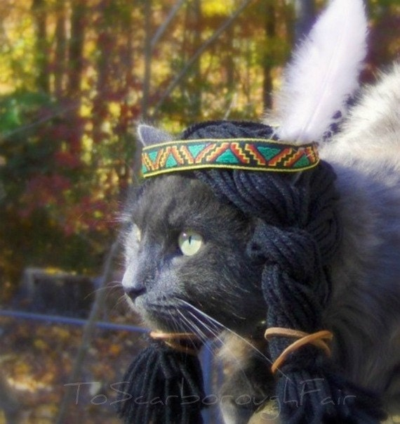 13 Halloween Costumes for Cats who Hate CostumesCat Costume For Cats