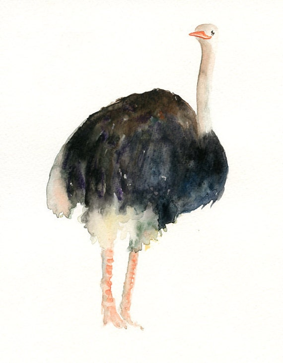 OSTRICH by DIMDI Original watercolor painting 8x10inch