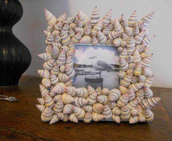Фоторамка с деревом раковин улиток, красочные и весело 8 на 8 дюймов - Канны MEDIUM