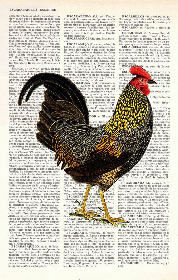 Chicken Book print  dictionary Print on Vintage Dictionary Book altered art dictionary page illustration book print art