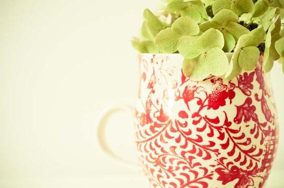 Привет, утро.  8x10 изобразительного искусства фотографии.  современной фотографии пищи. белый красный зеленый стене кухни искусства.  цветок фотографии.  Ботанический печати