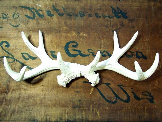 Ready to Ship / Large Antler Wall Rack in Shabby Creamy White / Anthropologie Style