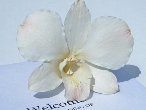 wedding cakes decor with orchids