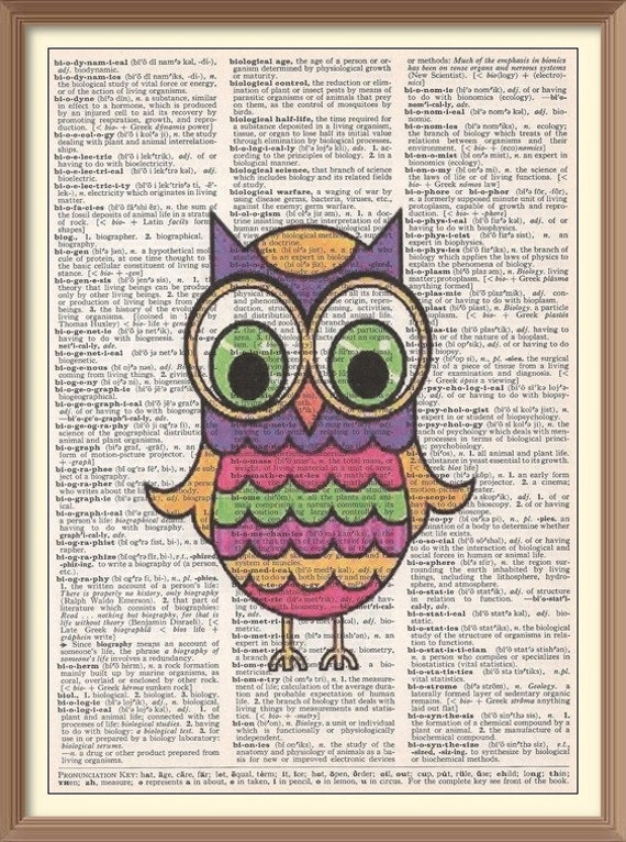 Owl dictionary image search results for View dictionary