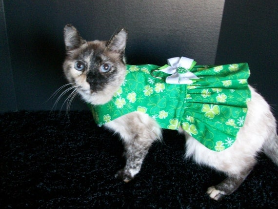 custom made st patricks harness dress for cats and dogs
