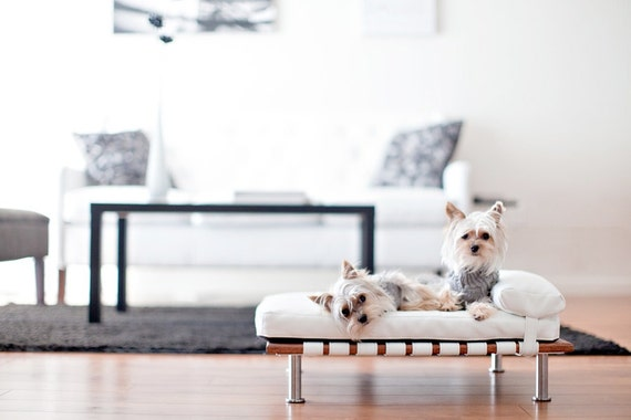 "Modern Pet Bed, daybed and lounger (Small Dog Bed / Cat Bed, 25""x19"")"